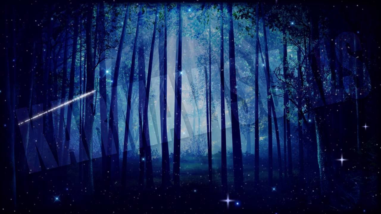 Forest Night Sky PREVI...