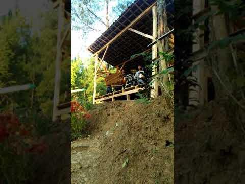 Gumelar Jawa Tengah Wisata Alam Mbulu Kuning