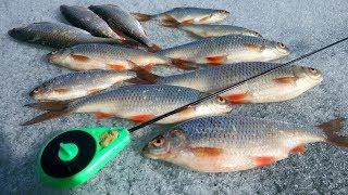 рыбалка весной, апрельская плотва, оз.Кандры-куль 17.04.18
