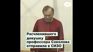 Расчленившего аспирантку Анастасию Ещенко историка Олега Соколова отправили в СИЗО | ROMB