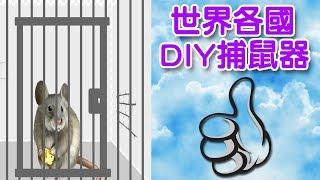 168 like diy 捕鼠大作戰 - 20種DIY捕鼠器