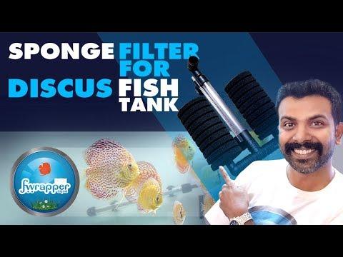 Sponge Filter For Discus Fish Tank