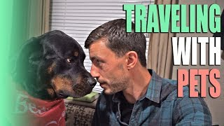Traveling with Pets in an RV - What It's Like Full Time RVing with Animals