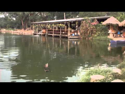 Fishing Dream-Lake Resort Chiang Mai