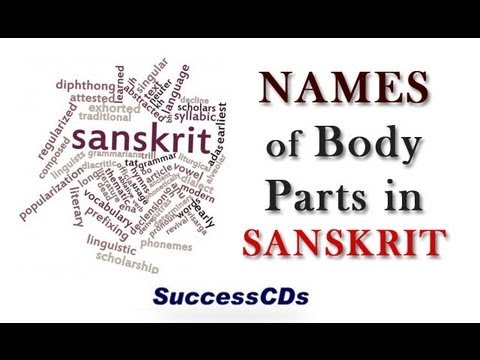 Name of Body Parts in Sanskrit - YouTube