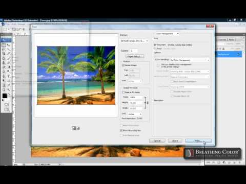 Color Management | Free Download Epson® icc Profiles | Canon