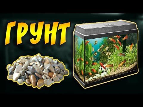 Грунт для аквариума, какой лучше выбрать аквариумный грунт! Камни, коряги, декорации  для аквариума!