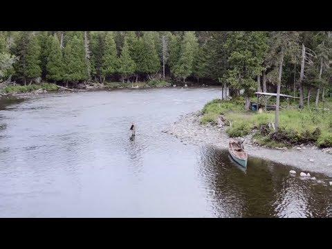 Au coeur des Chic-Chocs: Les rivières