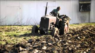Ploughing up with International B-250 and Massey Ferguson 797 plough