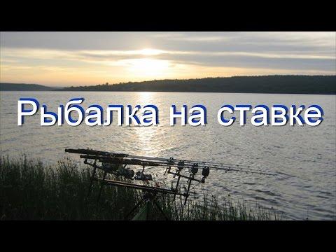 Видео уроки и обучение рыбалке - смотреть онлайн