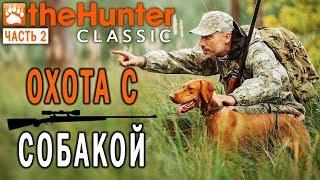 theHunter Classic #2 СТРИМ 🐶 - Охота с Собакой