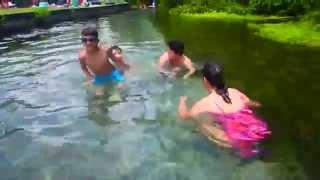 Русская Флорида в минеральной воде Kelly Park Apopka Florida 11.07.2014