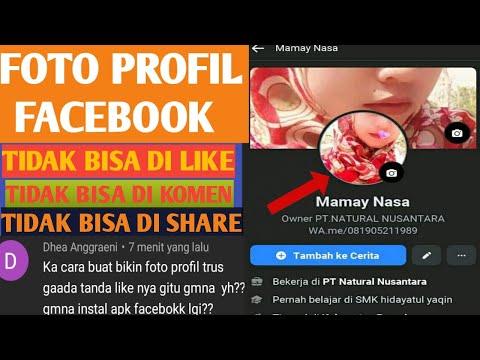 cara-agar-foto-profil-fb-tidak-bisa-di-like,-di-komen,-di-share