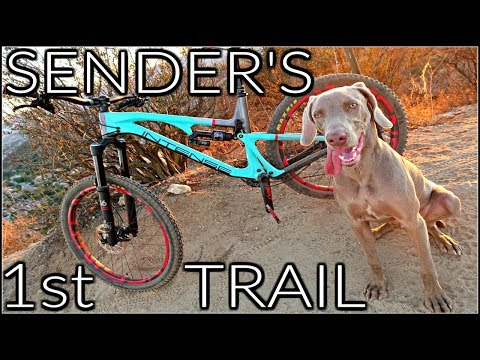 How to Train a Trail Dog | My Dog's First Mountain Bike Trail | Sender the Trail Dog | Top MTB Dog