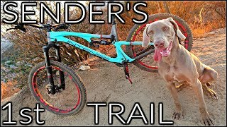 How to Train a Trail Dog   My Dog's First Mountain Bike Trail   Sender the Trail Dog   Top MTB Dog