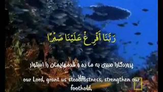 Rabana (Rabbanaa) Clip Ramezan Ostad Shajarian ربنا استاد شجریان ماه رمضان