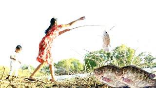 Download Lagu Amazing Fishing Skills   Wild Fishes much Tastier than Salt water fishes   Jaffna Lady mp3