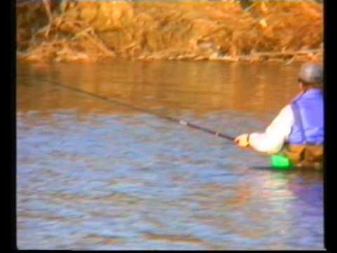 Guardare il video su pesca nel nord