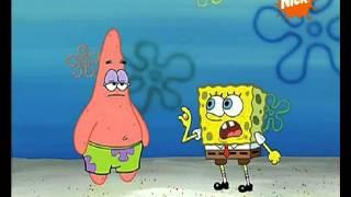 PYTP spongebob Kanciastoporty