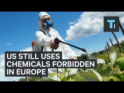 Europe has banned hundreds of chemicals that the US still uses