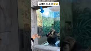Watch ending 😂🤣😃😂   fuฑny video   subscribe for more videos   #short