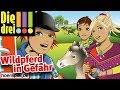 Die drei !!! - Folge 55: Wildpferd in Gefahr