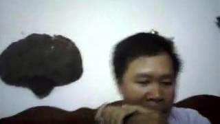 Harmonica  Quê Em Miền Trung Du - Solo Minh Đức tel 01672242138