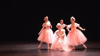 Loyola Dance Theatre 2015 - Pas De Quatre