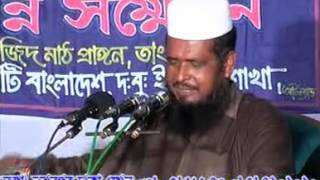 Boro Pirer Kahini. Maulana Tofazzal Hossain Voirob Waz.