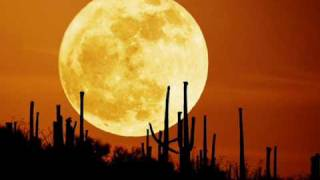 Shahin & Sepehr - October Moon
