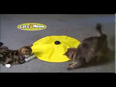 Cat's Meow Commercial For The Fun Cat Toy