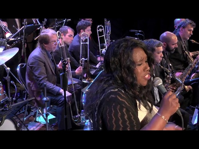 Vintage Orchestra ft. Denise King I left my heart in San Francisco