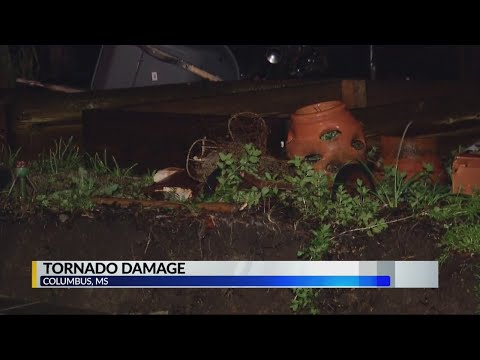 More Storm Damage in Columbus MS – Alabama Alerts