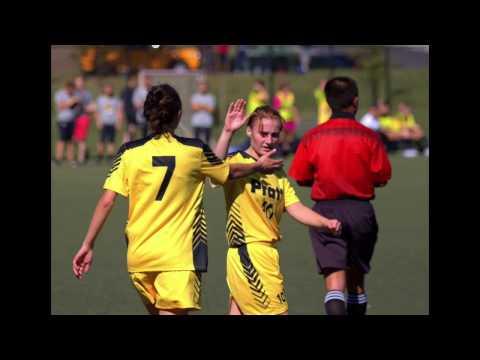 2016-17 Pratt Institute Athletics Highlight Video