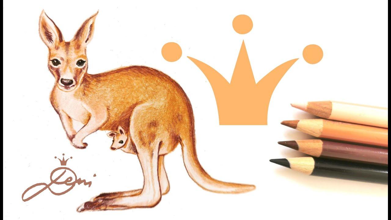 Känguru realistisch und schnell zeichnen lernen 🦘How to Draw a Realistic Kangaroo with Baby 🦘