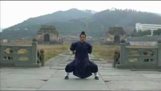 WuDang Five animals : Dragon, Tiger, Leopard, Snake, Crane