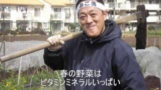 アゴ勇さんが野菜の歌を歌っています。 東京近郊で家庭菜園をやっている...