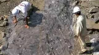 発掘日誌2008 8/12 足跡化石の調査方法