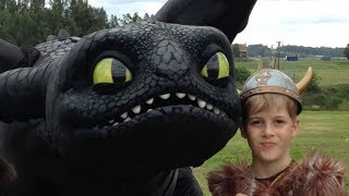 The Real Toothless, How To Train Your Dragon 2 toys and TV show