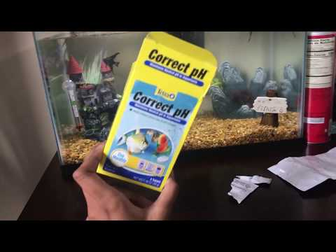 How To Fix The PH Level In Your Fish Tank
