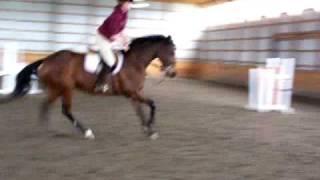 Melissa rides bucking horse in indoor arena.