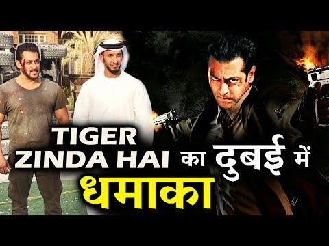Salman Khan की Tiger Zinda Hai मचा रही है Dubai में धूम