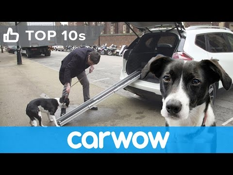 Nissan X-Trail 4Dogs - see its cool canine-friendly features | Top10s