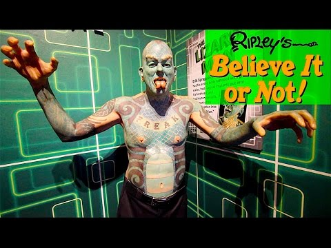Ripley's Believe It Or Not! Orlando Museum | DCP Fall 2016