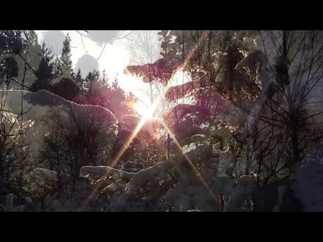 Изображение предпросмотра прочтения – ВладиславХныкин читает произведение «Чародейкою Зимою…» Ф.И.Тютчева