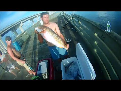 Take Your Employees Fishing, Grand Isle