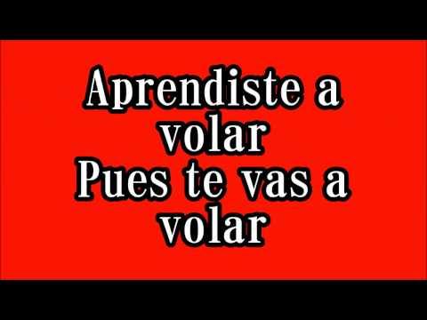Vicente Fernandez Aprendiste A Volar Lyrics
