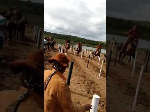 Festa dos vaqueiros Ibiquera-Ba /2019