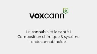 Projet VoxCann - Le cannabis & la santé I: composition chimique et système endocannabinoïde