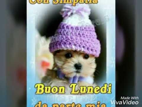 Buongiorno buon lunedi youtube for Buon lunedi whatsapp